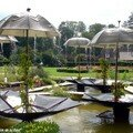 Jardin aqua sans terre - Jardin aqua l'envers