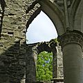 balade à cheval médiévale - Abbaye de Hambye (203)