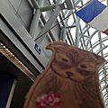 aeroport chicago