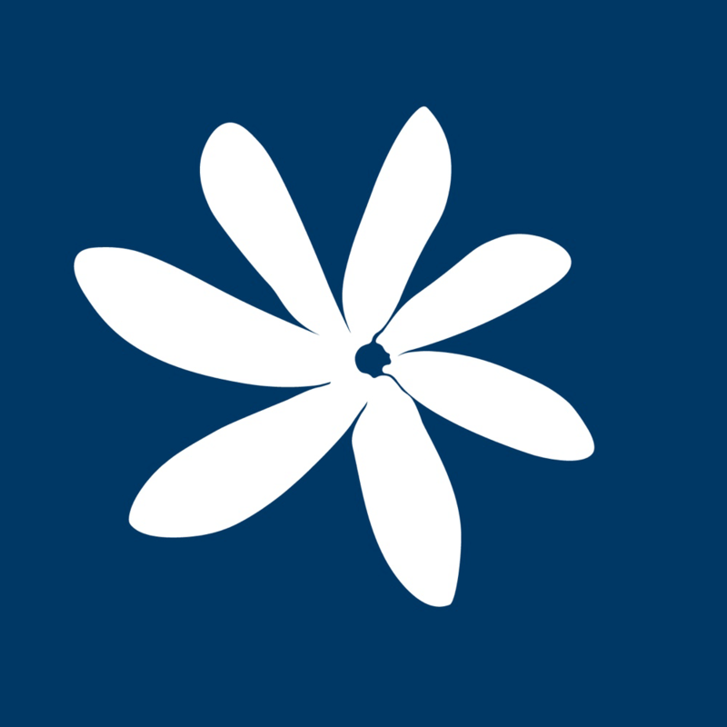 air_tahiti_nui_icon_detail