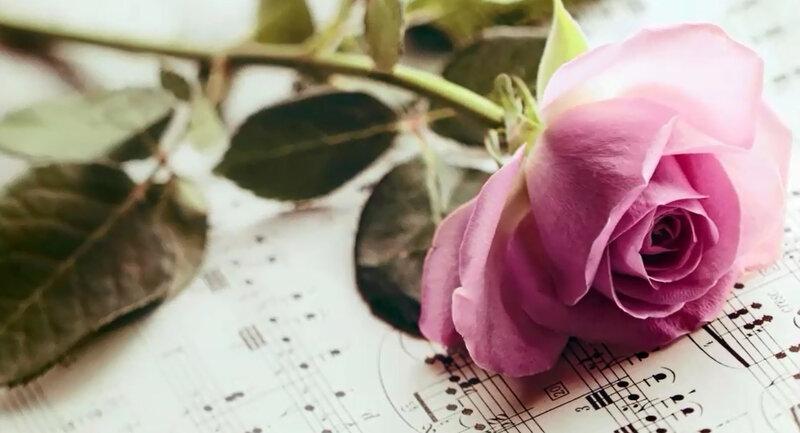 fleur maurane