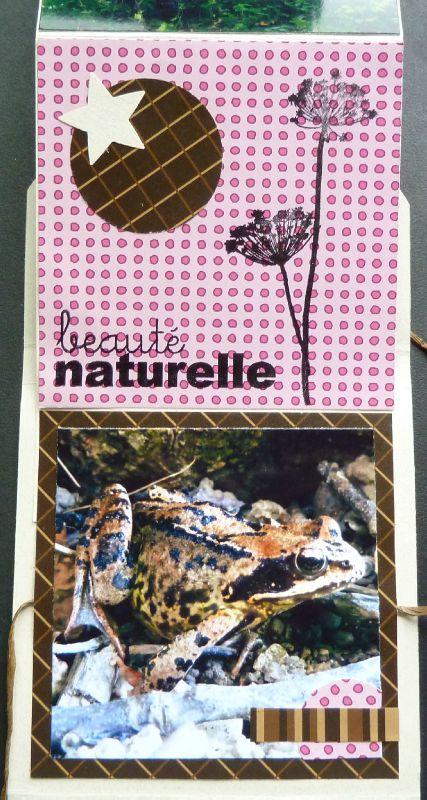 Lilou752-mini-promenade-dans-les-bois (6)