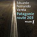 Rentrée littéraire : <b>Patagonie</b> route 203 : un road trip planant et atmosphérique