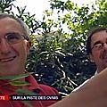 21/06/2014 : france 2 à 20h : un court sujet sur le geipan