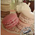 Lot cupcake et 6 macarons 15 € frais de port colisimo