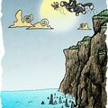 requins+chat