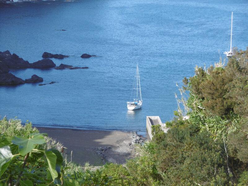 avant port de Flores