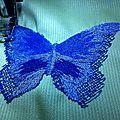 Domptage de papillons