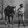 La Balade du Jambon - Balade à cheval dans le mortainais (67)