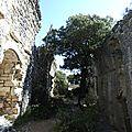 Chateau de Vivioures 24 mars 2016