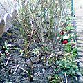 jardinierdunord