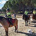 00236) chpt départemental equitation 2018