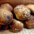 Petits pains aux graines et au miel