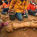 Un géant de 5 mètres de haut découvert sur un site archeologique en <b>Australie</b>