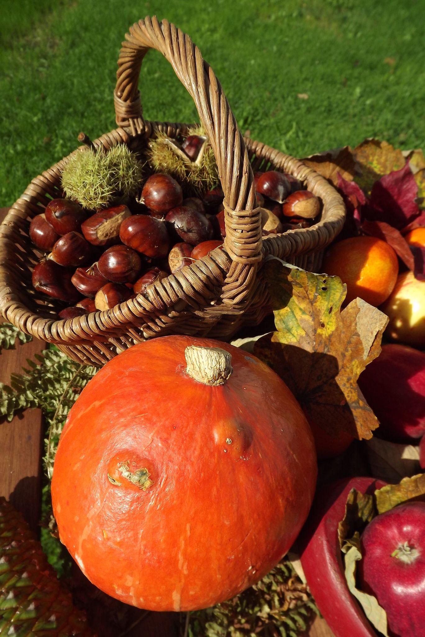 l'automne a table