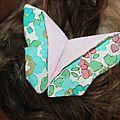 Barrette papillon!!!