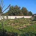 Dernières récoltes de la saison et visite de jardins