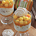 <b>VERRINE</b> FACON PAVLOVA MANGUE LITCHI