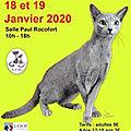 Exposition de CUERS les 18 et 19 janvier: