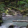 Sulphur River Mount Baker 2