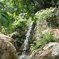 13. Ma cascade-thalosso