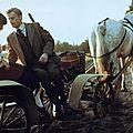 Les demoiselles de wilko (panny z wilka) d'andrzej wajda - 1979
