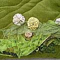 Velours vert (détail)
