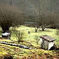 ptites cabanes de jardinets