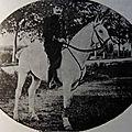 <b>Capitaine</b> Louis Joseph René Lanes du 90e régiment d'infanterie