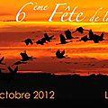Fête de la <b>grue</b> <b>cendrée</b> au lac du Der-Chantecoq : les migratrices arrivent en Champagne !