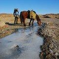 Parfois une riviere gelee...le cheval s'abreuve.