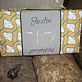 Justin pro
