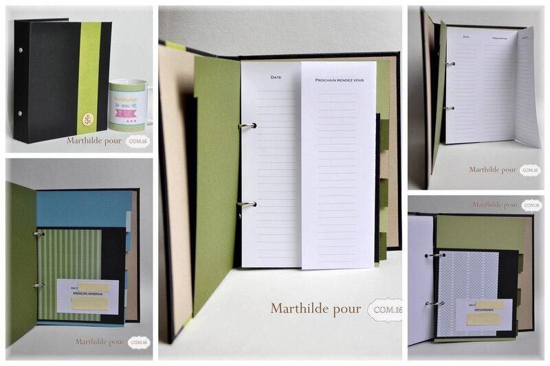 marthilde_pour_com16_carnetmedecins120_gaspard