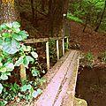 En passant par le pont de bois….
