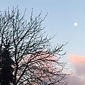 Sous une lune gibbeuse