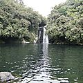 Bassin boeuf - bassin nicole