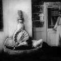 Chotard et cie de jean renoir - 1933