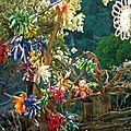 arbre aux éxubérances de couleur