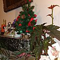 <b>Noél</b> chez nous ...<b>décos</b> <b>Noël</b>
