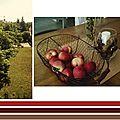Les premières pommes