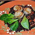 Salade tiède de lentilles aux noix de St-Jacques et <b>chorizo</b>