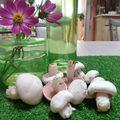 4-champignons (1)