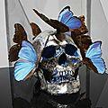 Philippe pasqua (né en 1965) vanité, tête aux papillons