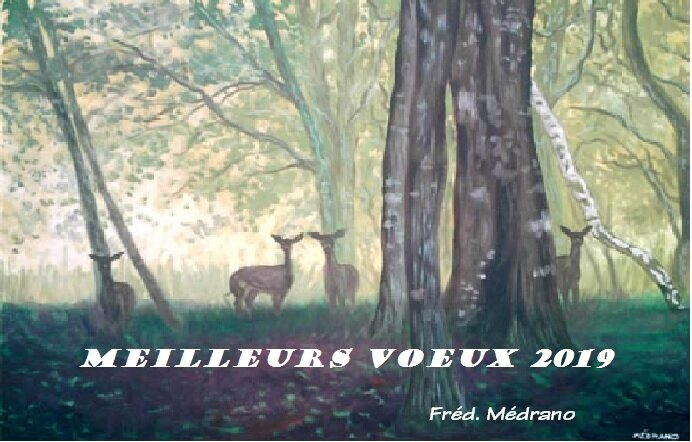 voeux2019
