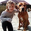 ISABELLE P famille d'accueil à WILLEMS ( <b>roubaix</b>-villeneuve d'ascq-Lille) garde votre chien en famille