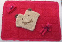 recto de la couverture - poncho chat -