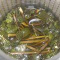 Petit thé à la menthe et roses des sables du dimanche après-midi