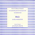 FP rayures horizontales bleues et blanches centre blanc modèle Malo