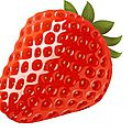 Mon gel douche préféré en ce moment !! cottage fraise menthe