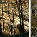 Vues de la Chartreuse en hiver (fonte des neiges) - (hiver 2006)
